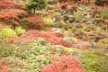 2004年9月21日 大雪山